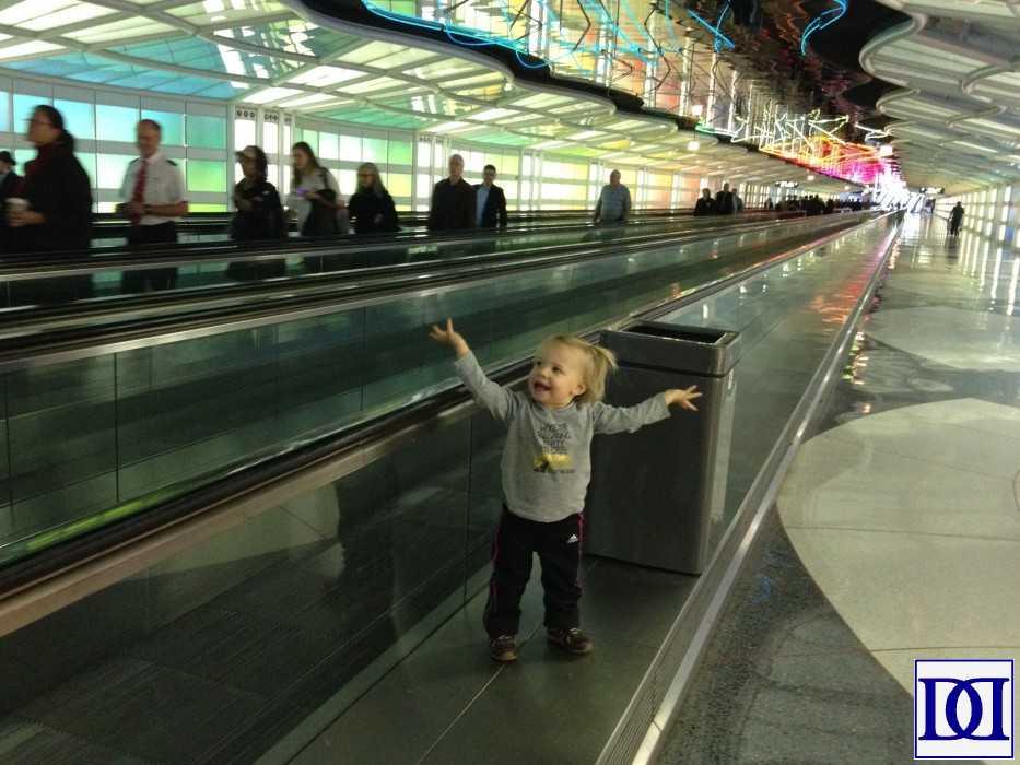 airline-regulations-terminal