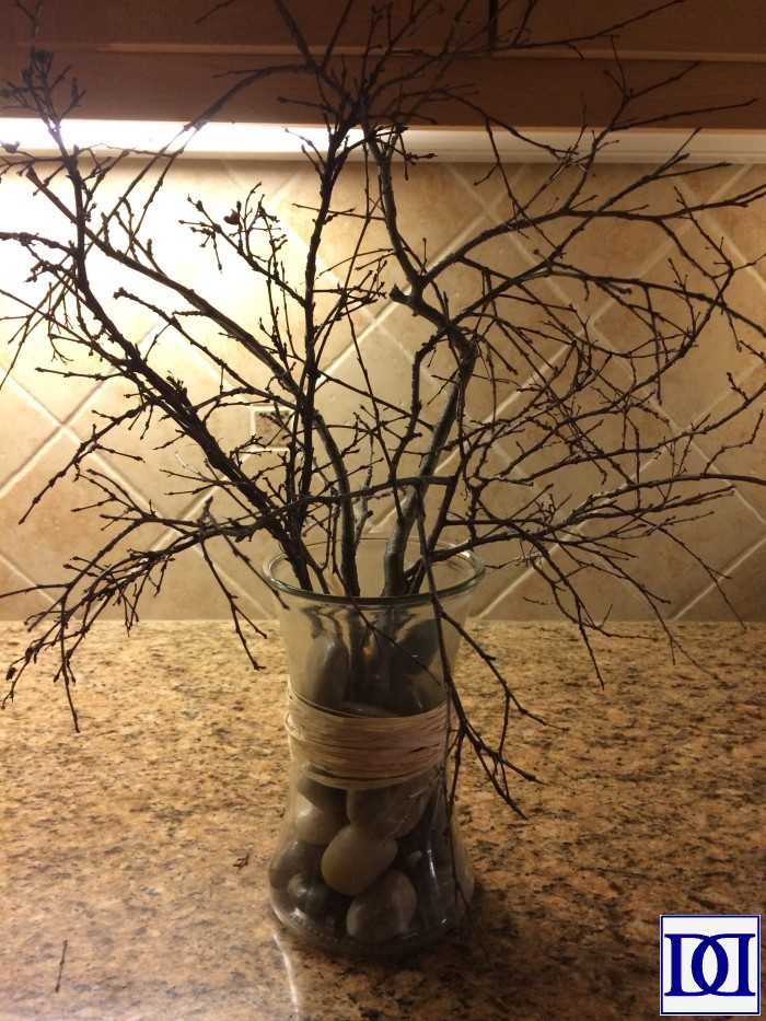 lenten_tree_bare