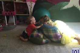 Raising a Big Sibling: Overview
