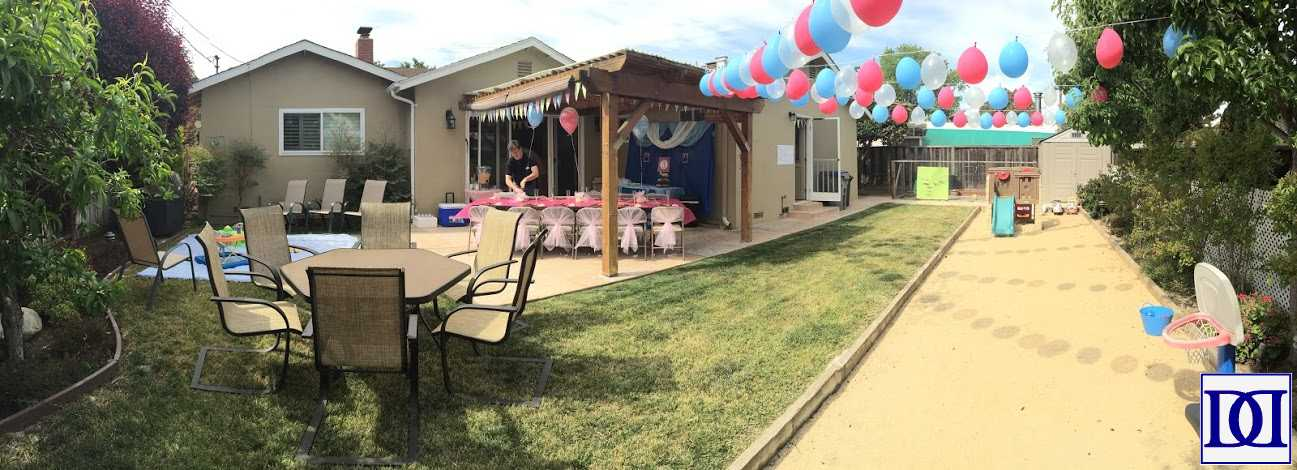 princess_party_backyard_panorama