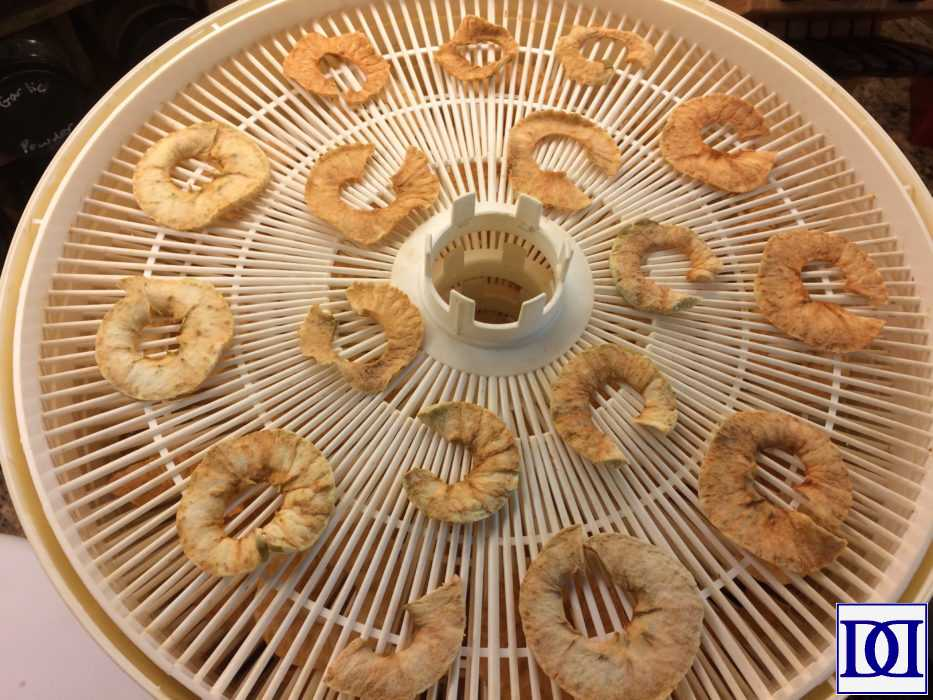 apple_chips_dried