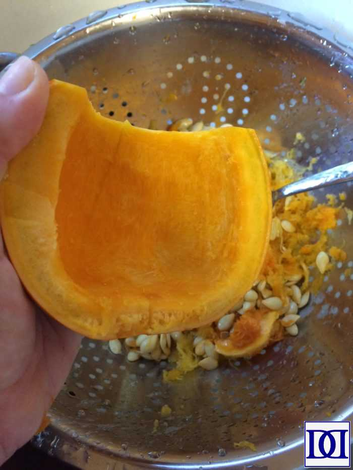 pumpkin_puree_clean